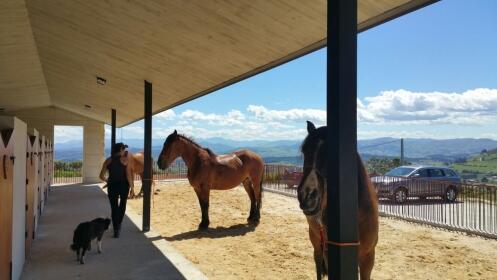 Santillana del Mar a caballo + degustación típica