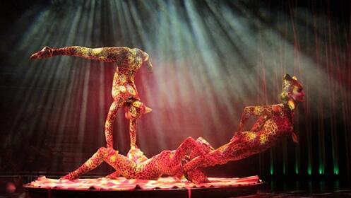 Entradas para Circo Italiano Laredo