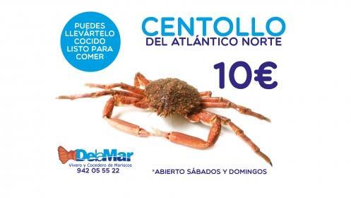 Centollo del Atlántico Norte 10€