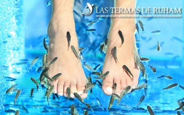 Fish pedicure Basic o a la carta