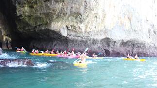 Paseo en kayak por la bahía + Snorkel + Conservera para 2 ó 4 personas