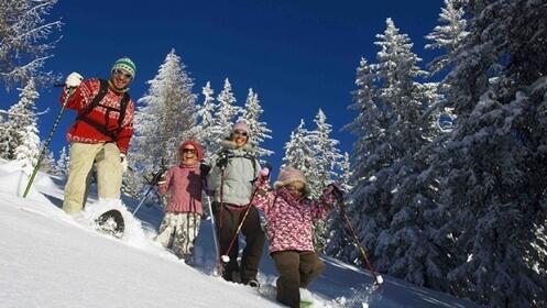 Experiencia con raquetas de nieve por 25€